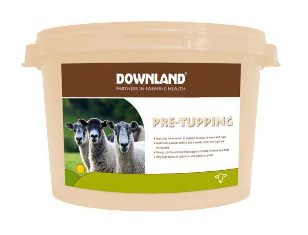 Downland_Pre-Tupping_Mock-Photo