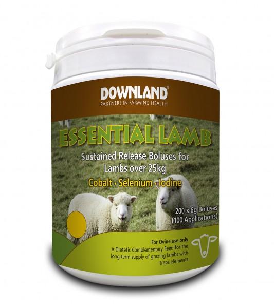 DL Essential Lamb 6g tub