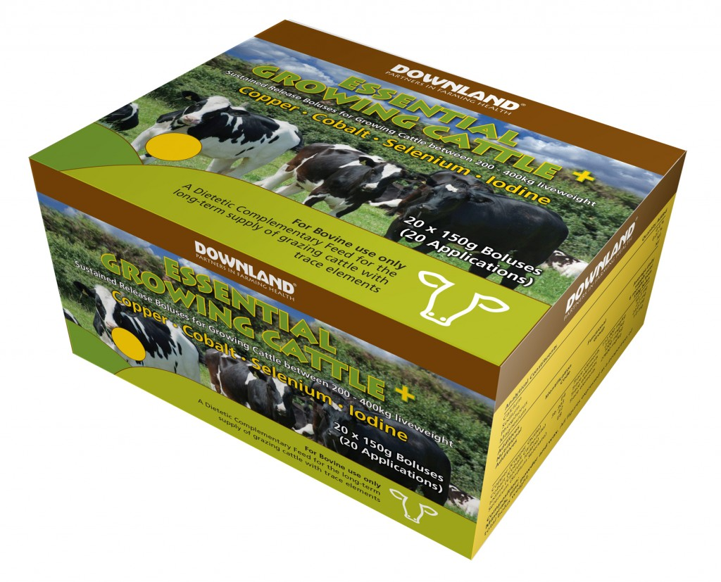 DL Essential Growing Cattle +