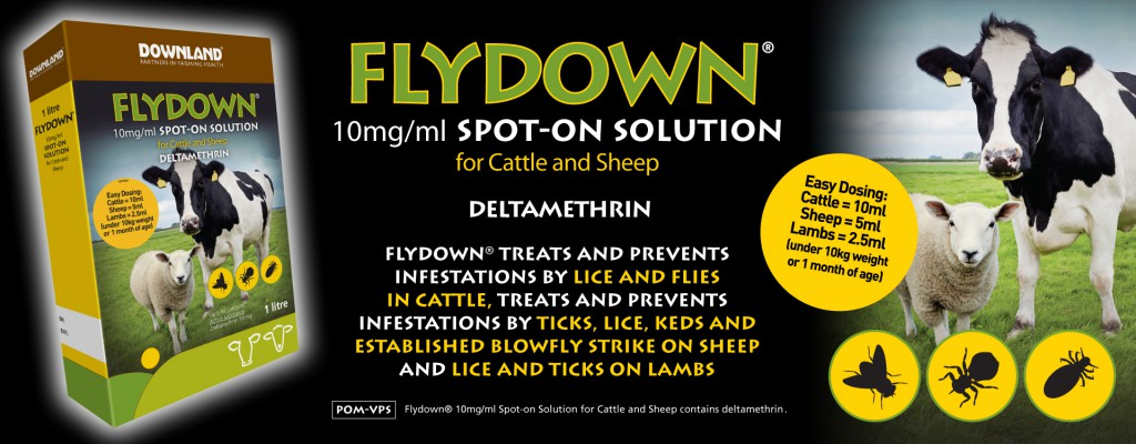 3745_Downland_Flydown_Web_Banner_750x1920px_v1b