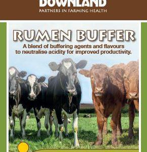 Rumen Buffer Acidosis