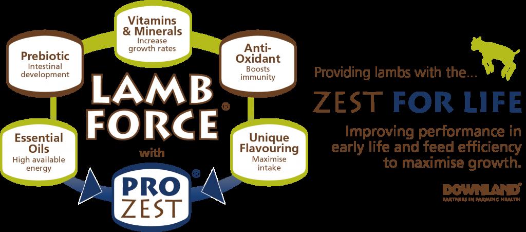 Lamb Force with Pro Zest